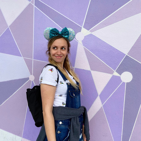 "Disney World ""Walls"""