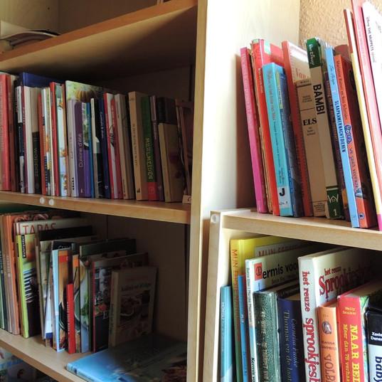 Bibliotheek 1.jpg