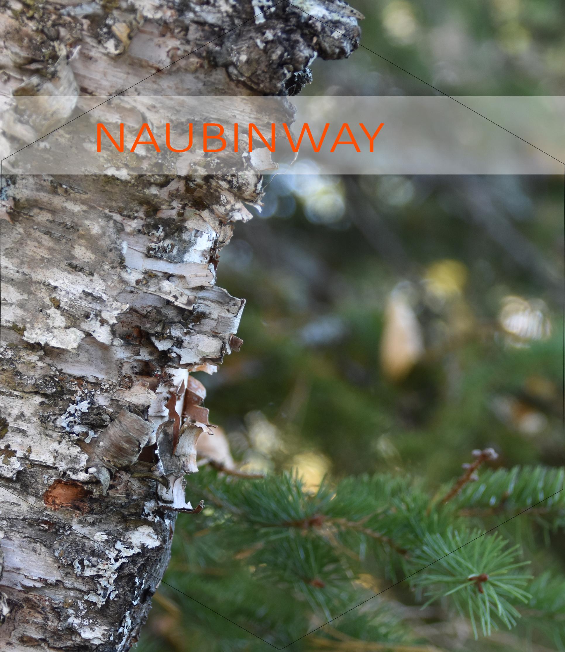Naubinway 4
