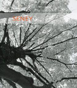 Seney