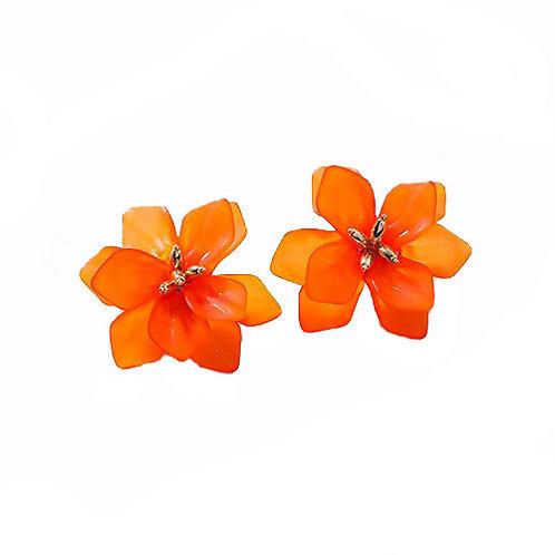 Bright Orange Flower Burst