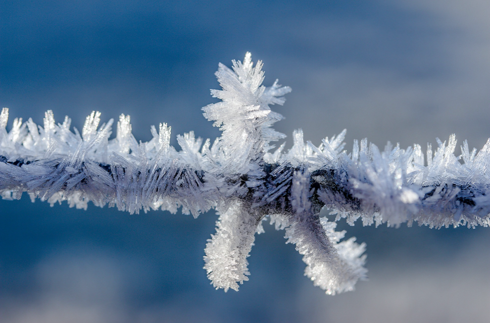 flocons neige cryogenisation gynecologie