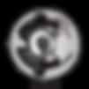 LOGO FAU blanc avec ombre png.png