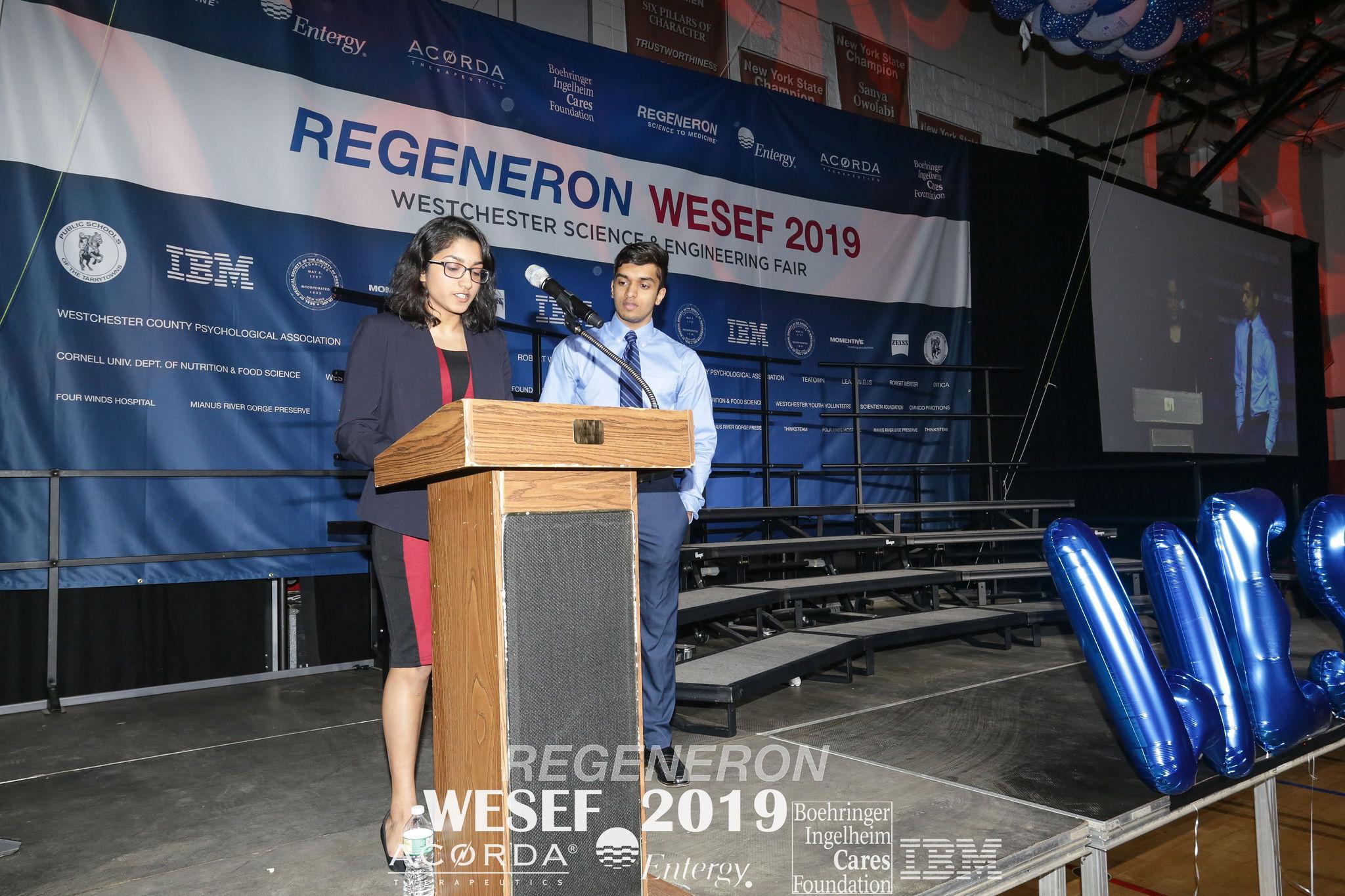 WESEF 2019