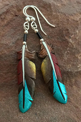 Military Macaw Primary Feather