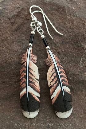Savannah Hawk Tail