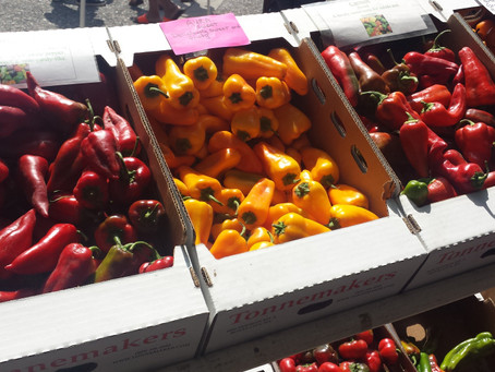 Putting Food By – Drying Peppers, Peaches and More!