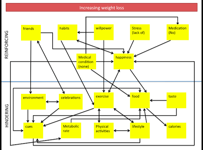 Increasing weight loss system diagram_edited