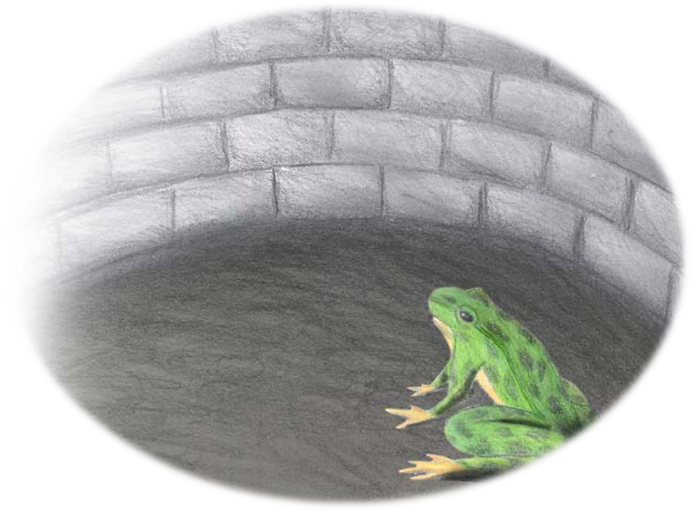 frog-in-well.png