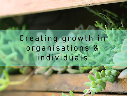 Did you notice the new elements for Growth Consulting?