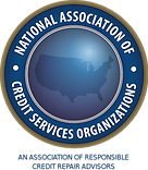 National Association of Credit Services Organizations (NACSO)