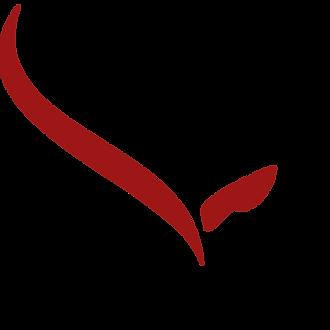 noun_bull_Red.png