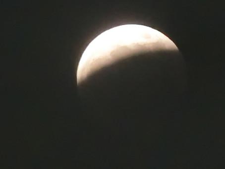 皆既月食見れましたか?