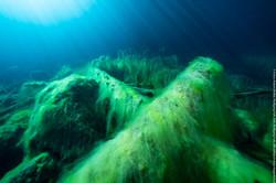 mystic underwater