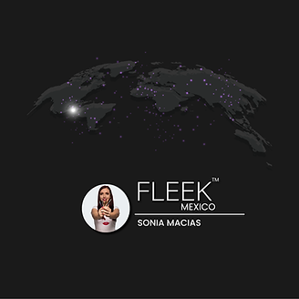 fleek-mexico-web.png