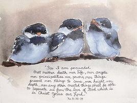 Bluebird watercolor print by Marji Stevens
