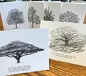 Tree notes 2.jpg