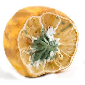Good - or a Lemon?