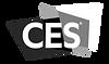 CES-smarter.png