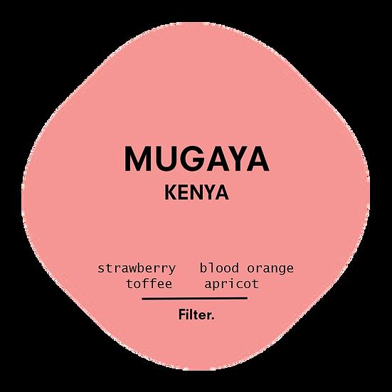 Mugaya | Kenya