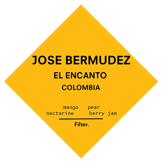 Jose Bermudez | Colombia | Filter