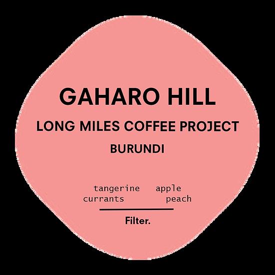 Gaharo Hill - LMCP   Burundi   Filter