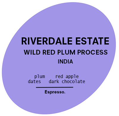 Riverdale Estate | Wild Red Plum | Espresso