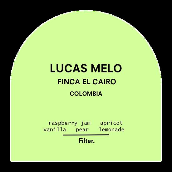 Lucas Melo - Finca El Cairo. Colombia