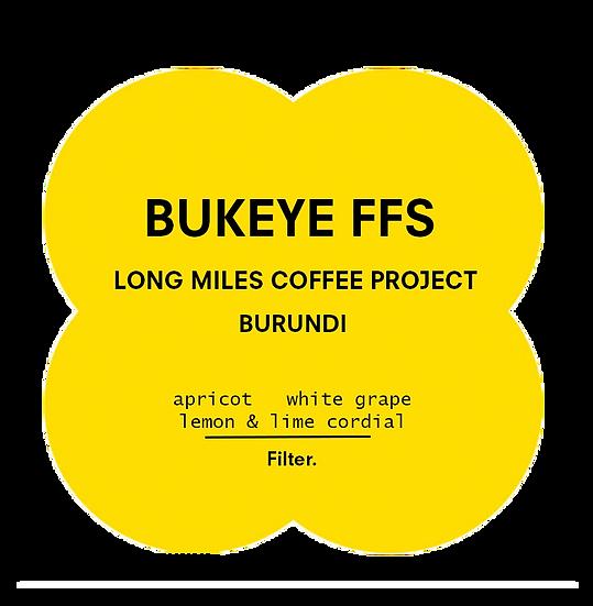 Bukeye FFS | Long Miles - Burundi | Filter