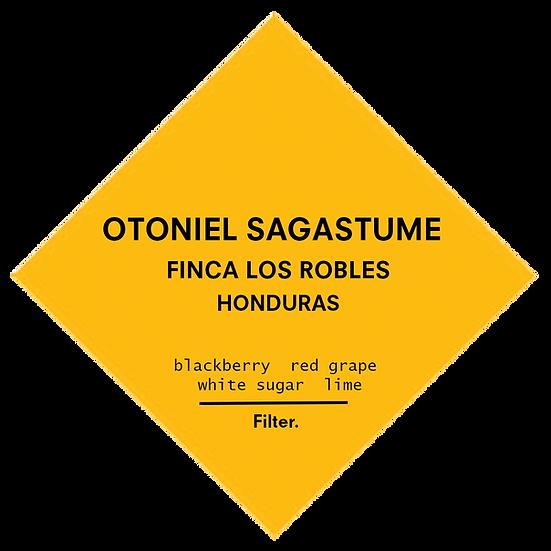Otoniel Sagastume. Honduras