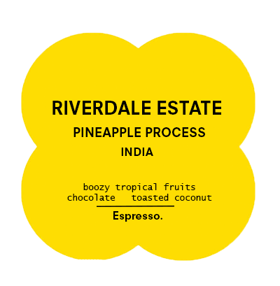 Riverdale Estate |  Pineapple Process