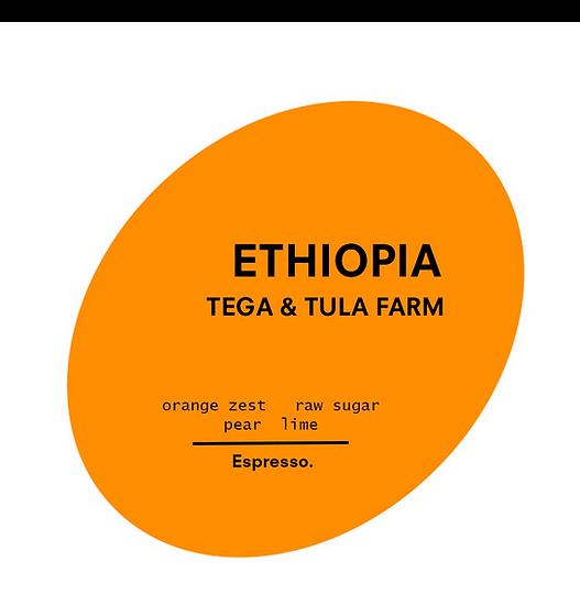 Ethiopia. Tega & Tula Farm