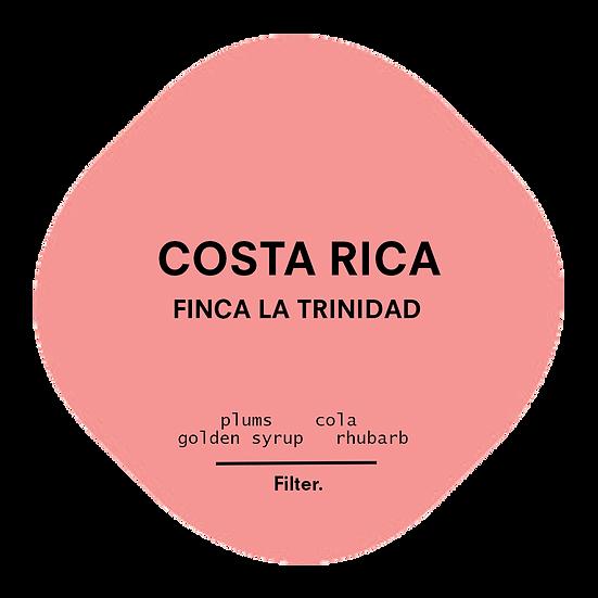 Costa Rica. Finca La Trinidad