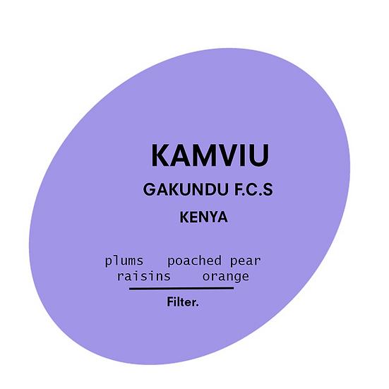 Kamviu | Kenya
