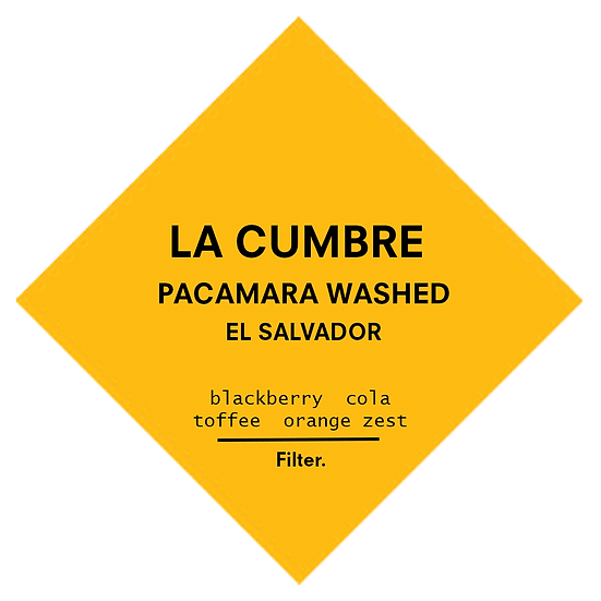 La Cumbre | Pacamara Washed | Filter