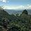 Thumbnail: Honduras. Martha Lícida Vásquez