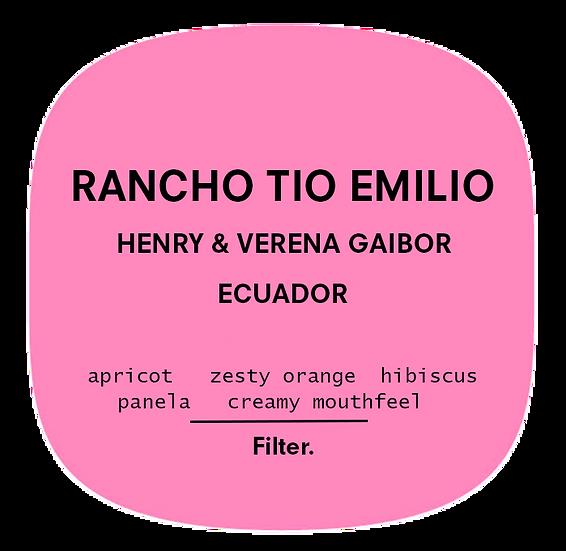 Rancho Tio Emilio | Ecuador | Filter