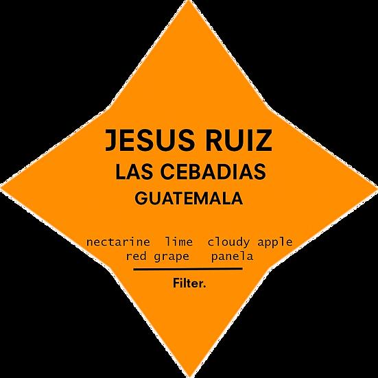 Jesus Ruiz | Guatemala | Filter