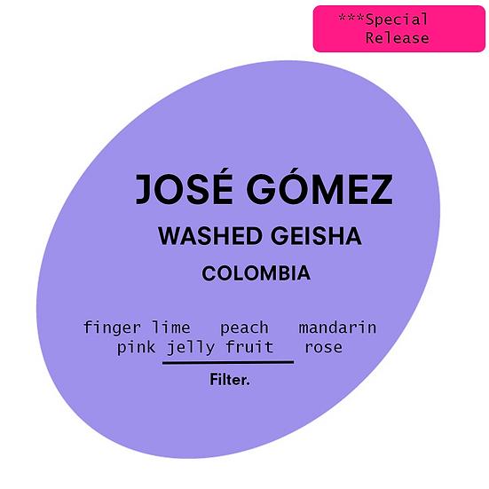 José Gómez Geisha   Filter