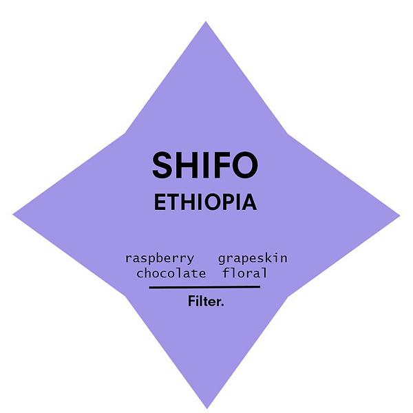 SHIFO_FILTER.png