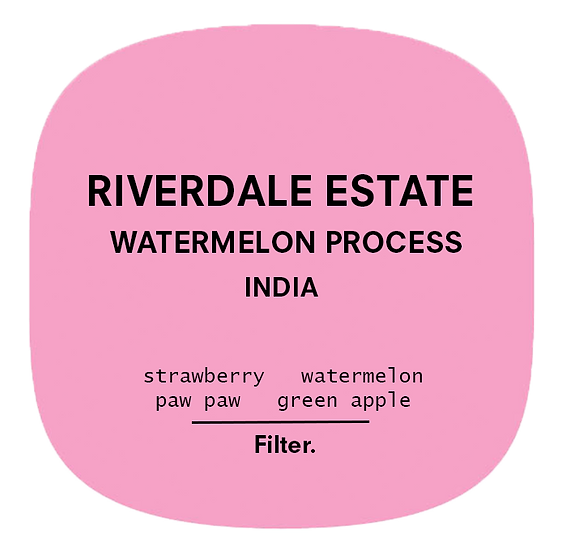 Riverdale Estate | Watermelon Process