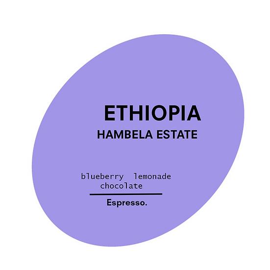Ethiopia. Hambela Estate.