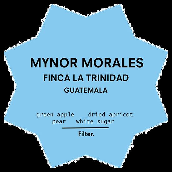 Mynor Morales | Filter