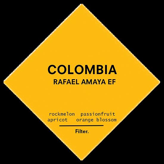 Colombia. Rafael Amaya EF Pink Bourbon