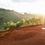 Thumbnail: Gaharo Hill - LMCP | Burundi | Filter