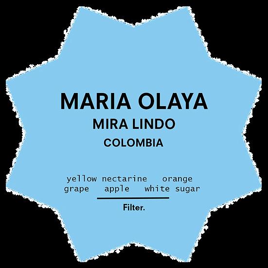Maria Olaya | Filter