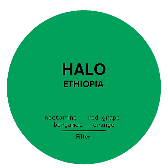 Halo | Ethiopia