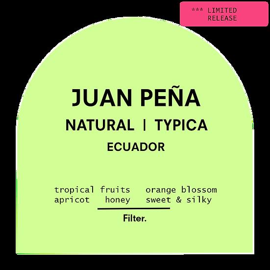Juan Peña | Natural Typica | Filter