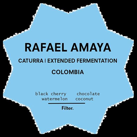 Rafael Amaya | Extended Fermentation | Colombia