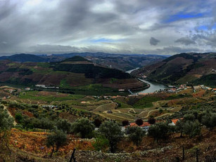 A Must Go Place: The Douro Valley